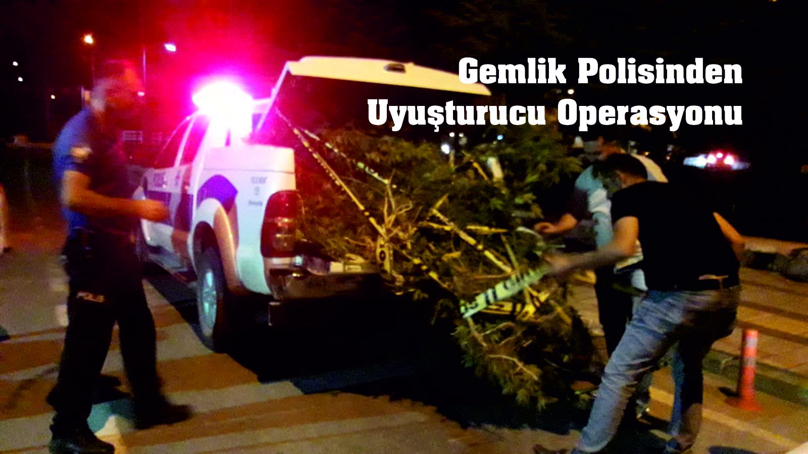 Gemlik Polisinden Uyuşturucu Operasyonu